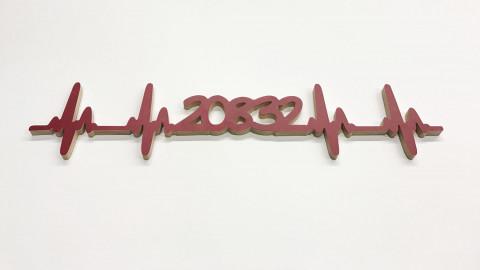 20832 Herzschlag