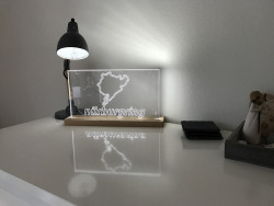 LED lamp with track of choice